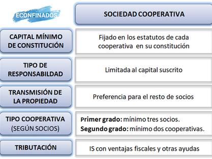 Características de la Sociedad Cooperativa