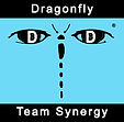 20210219-Dragonfly_Team_Synergy.jpg