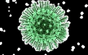 COVID-19-Virus-Transparent-Background-gr