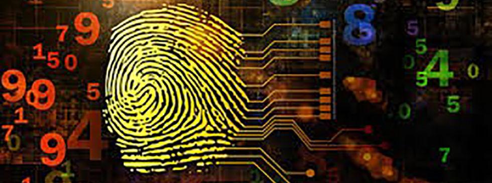 fingerprint numbers 1 (cropped).jpg