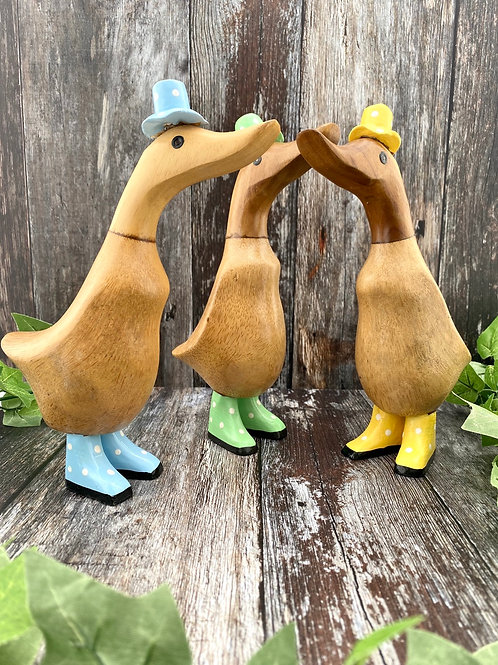 Paddle Ducks