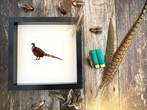 Pheasant Feather Framed Art