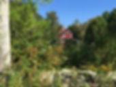 A beautiful beginning-of-Fall day 🍁.jpg