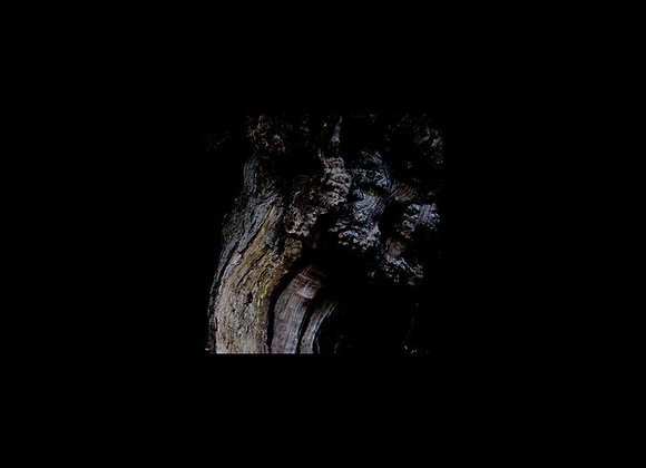 Brunnen  I  The Garden Of Perpetual Dreams LP