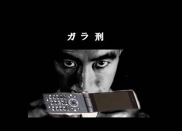 Tori Kudo I ガラ刑GALAKEI 2LP + CD