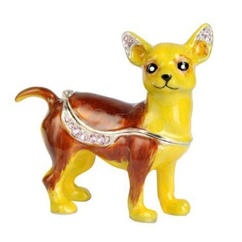 Chihuahua BX53
