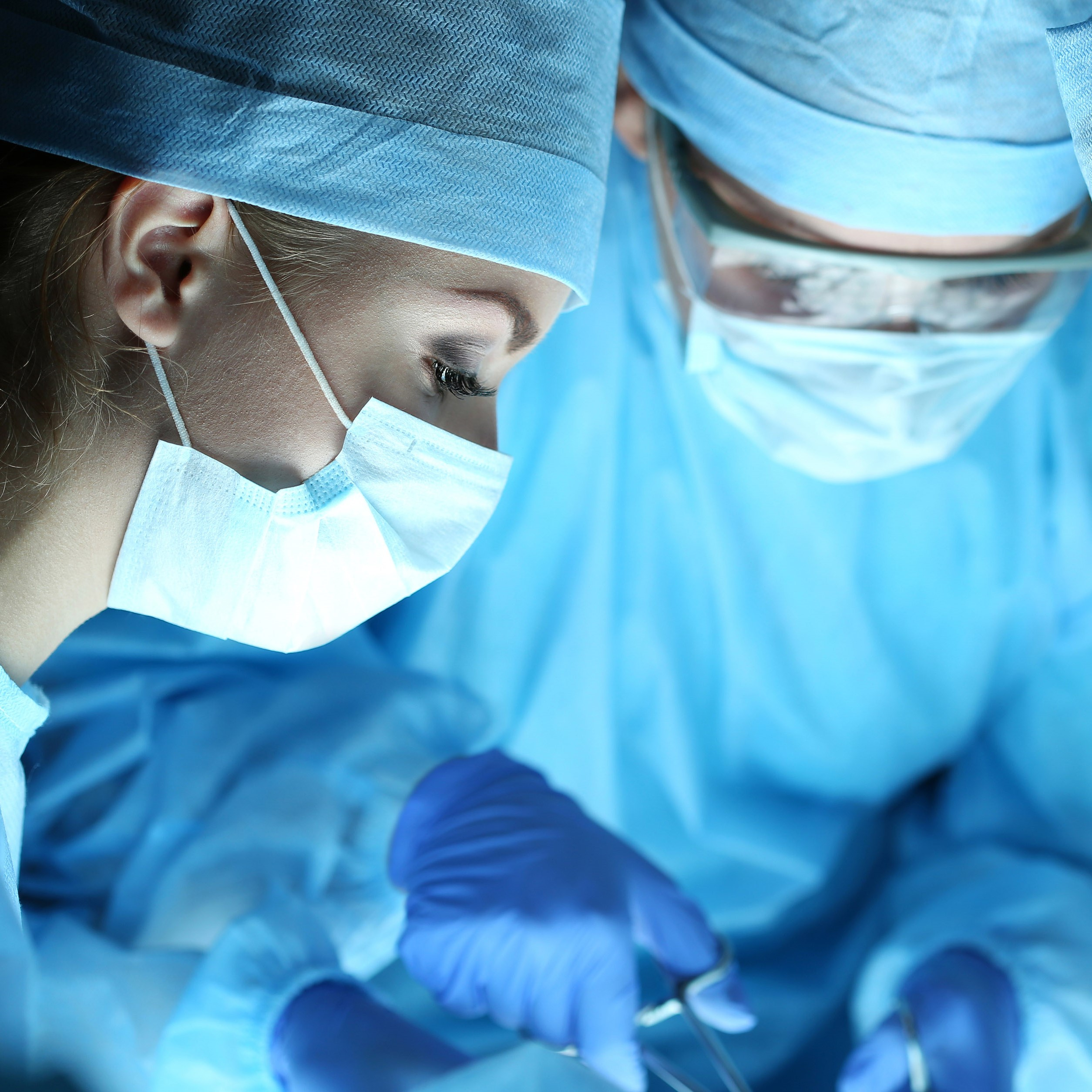 online anatomy course