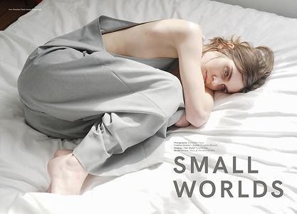 Small Worlds P1.jpg