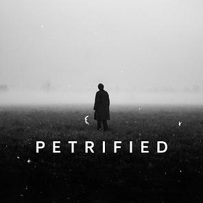 The Warren | Petrified
