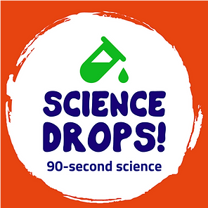 The Warren | Science Drops!