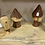 Thumbnail: Cedar Mushrooms