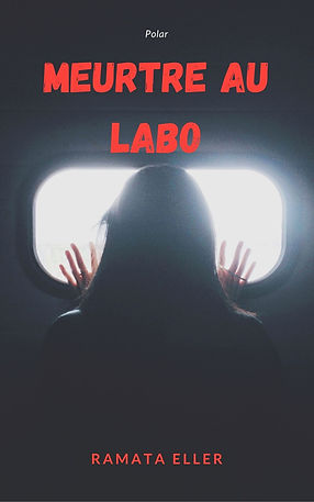 meurtre au labo_ebook cover.jpg