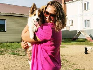 Танцы с собаками от А до Я Интервью с Екатериной Фризоргер