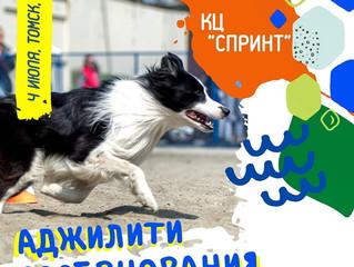 КЦ Спринт провел соревнования по аджилити в Томске