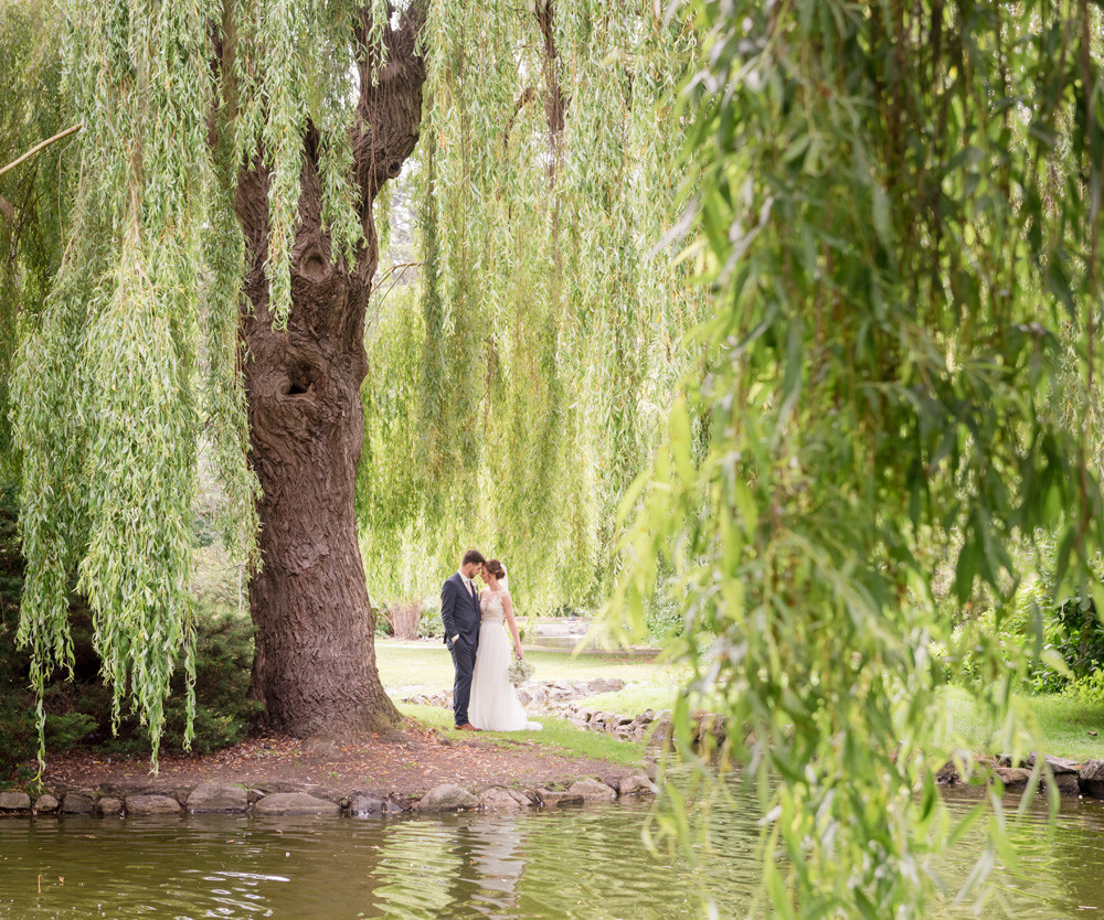 Bride & Groom embrace under willow