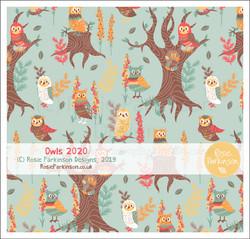 Owls 2020 1