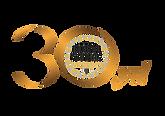 30_yıl_logo1.png