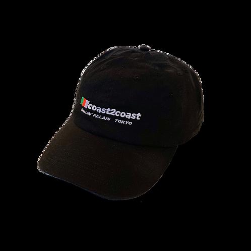VINEYARD CAP
