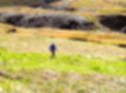 Run spring.jpg