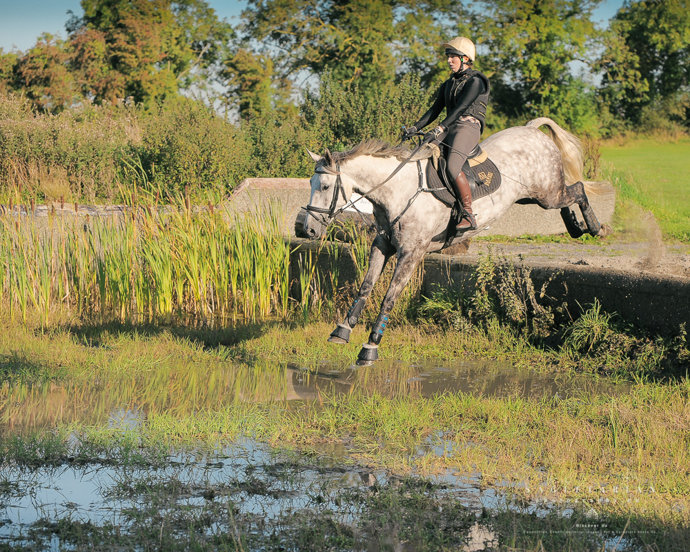 Water jump, grey horse, cross country, eventing