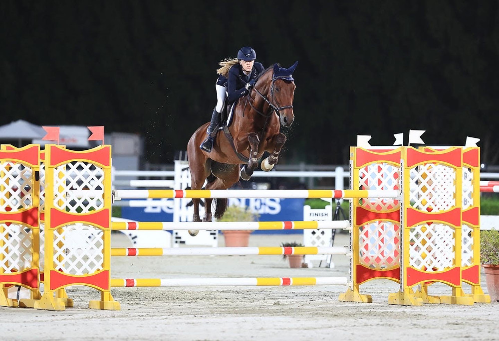 show jumping, barefoot horse, horse rider, bitless bridle