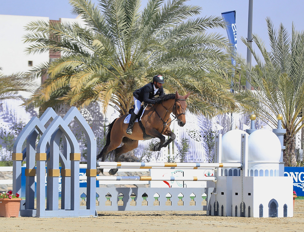 horse, horse jumping, show jumping, sharja equestrian and racing club