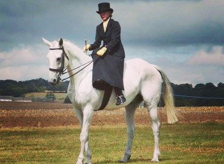 Take 5 Things- 5 reasons you should try Side Saddle riding
