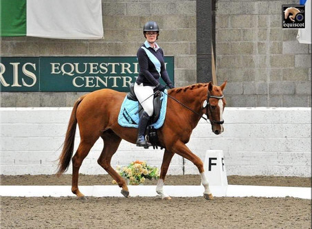 Take 5 Things- How to ride your best dressage test