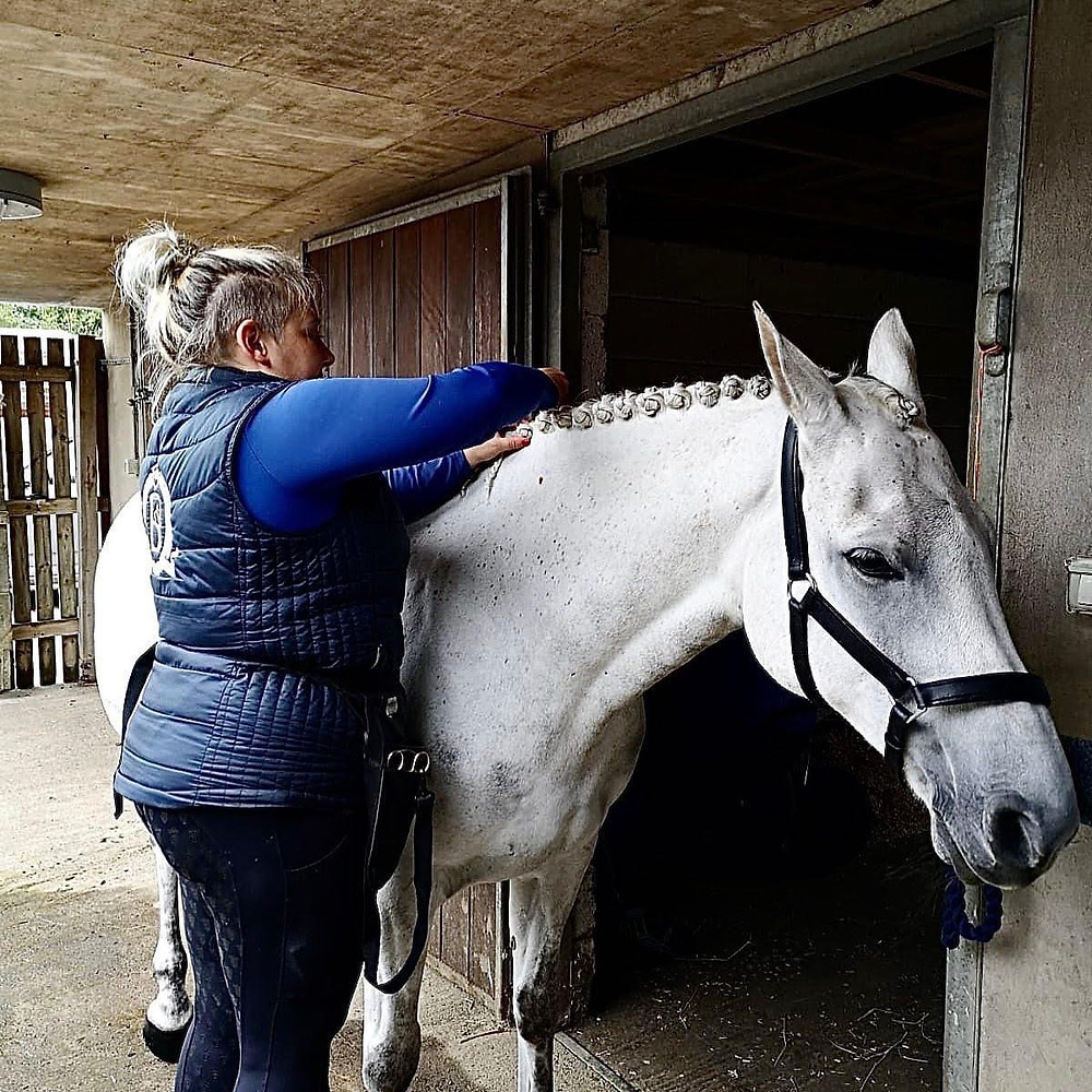 horse grooming, white horse, mane plaits, mane plaiting, horse plaits, professional groom, equestrian groom, equine turn out