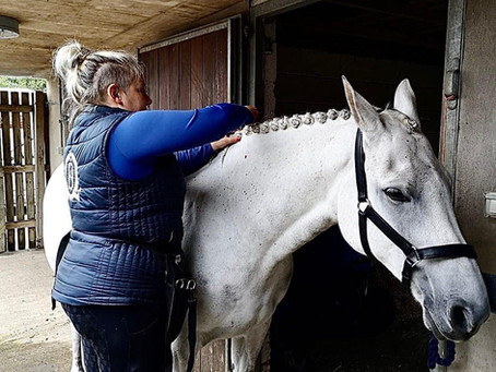 The ups and downs of life as a professional equestrian groom
