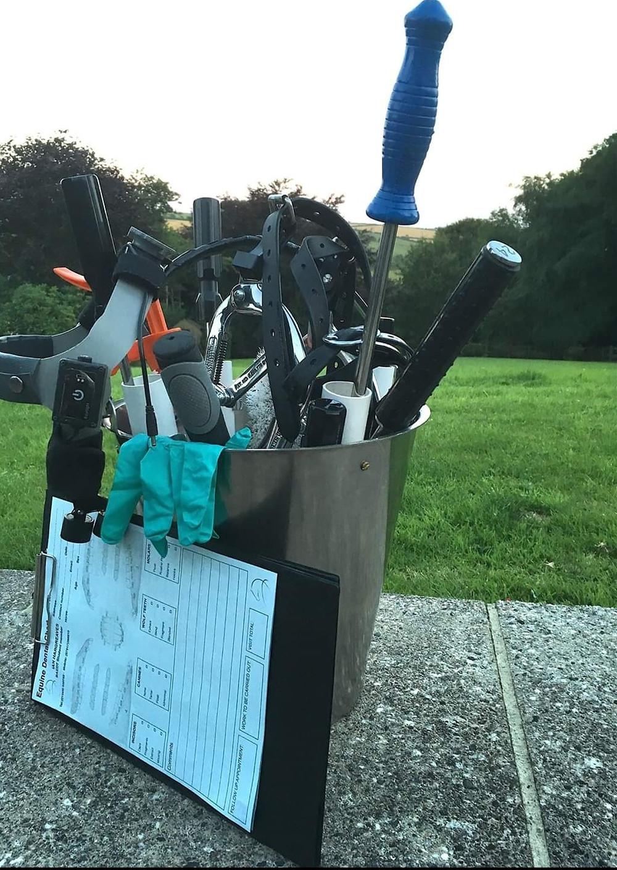 equine dentist, horse dentist, dentist tools