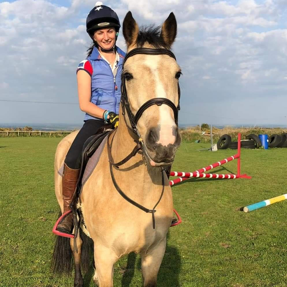 Young horse, dun horse, training horses