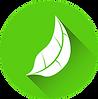 sustainability-foglia verde.png