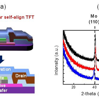Suppressing Channel Shortening Effect of Self-Aligned Coplanar Al-doped In-Sn-Zn-O TFTs Using Mo-Al Source/Drain Electrode as Cu Diffusion Barrier
