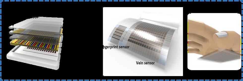 vein sensor.png