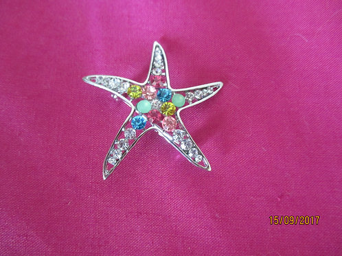 Funky Starfish Brooch