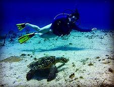Sarina Seeks scuba diving Cayman Islands