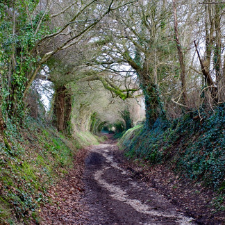Tunnel Hiking in the South Downs