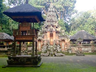 Indonesia ↣ Part 7: Unique Ubud