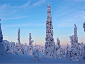 Adventuring In Finnish Lapland