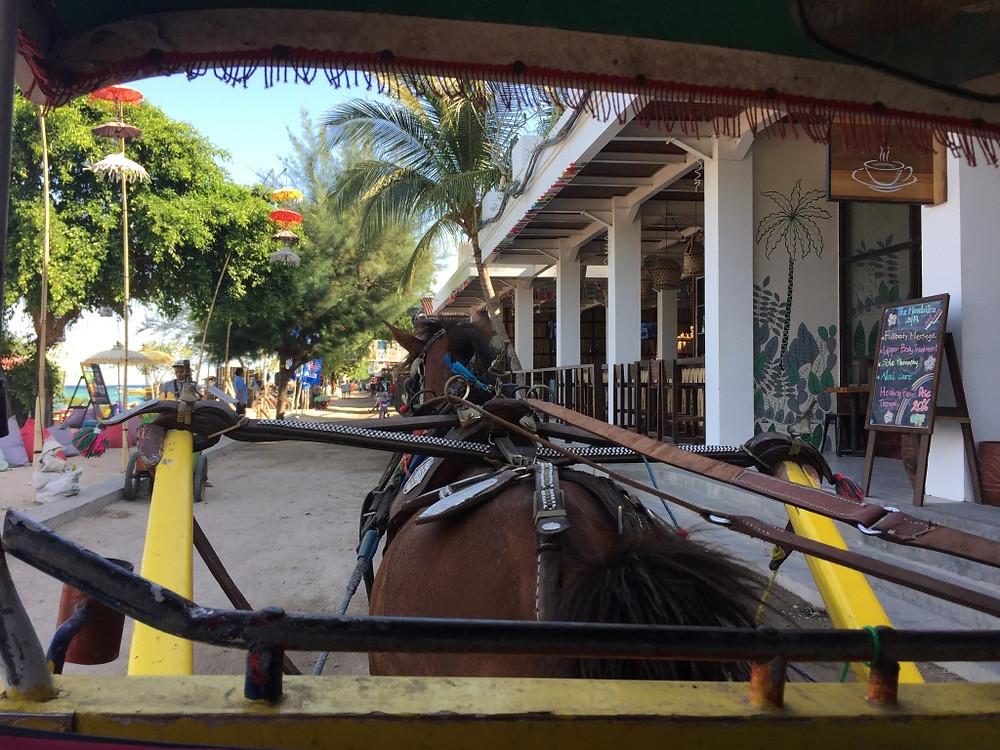 Horse drawn carriage, Gili Trawangan, Indonesia