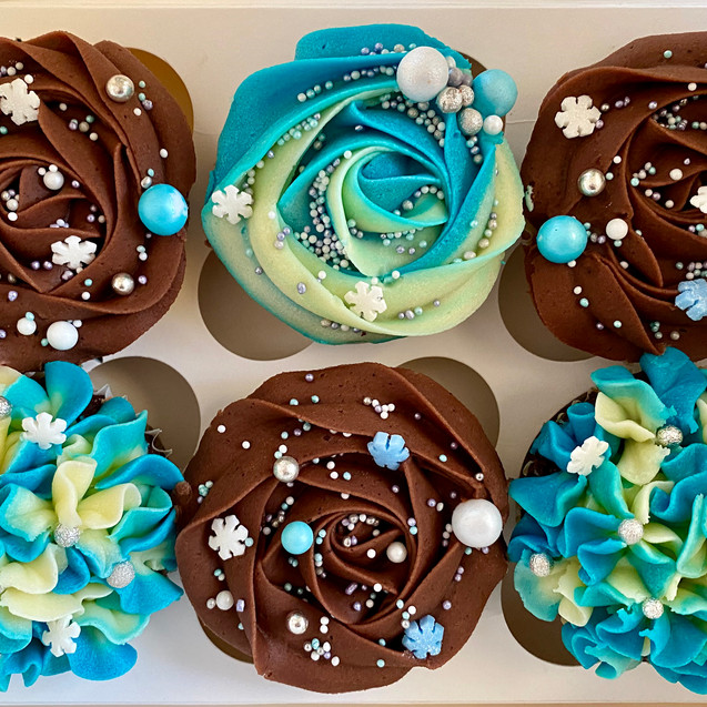 Chocolate and Snowy Cupcakes