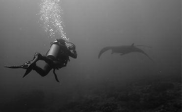 Scuba diving Nusa Lembongan, Indonesia