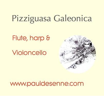 Pizziguasa Galeonica - Trio - Flute, Harp & Cello