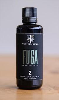 Neurocompositum Fuga 2.jpeg