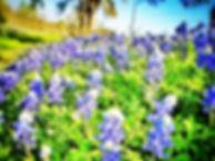 2012-05-11 21.01.04.jpg