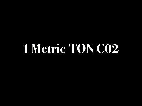 1 METRIC TON C02