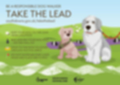 Take the Lead - A5 advert.jpg