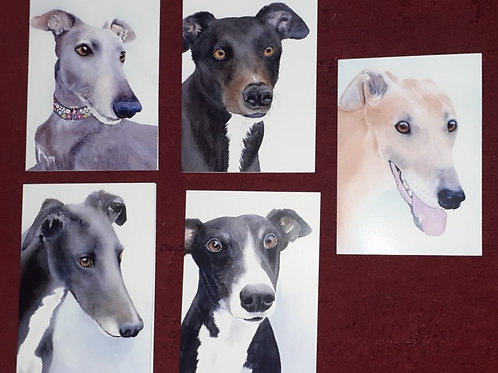 Pack of 5 Hound Cards