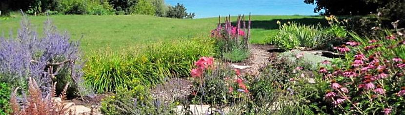Garden - Challenge Party 2010